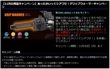 Blog_201101_2